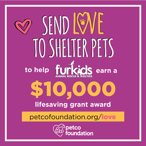 Did you adopt from Furkids?? Win prizes, help Furkids and be a part of the World's Largest Virtual Valentine!