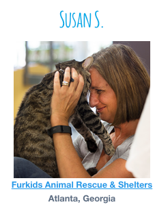 Furkid's Foster Nationally Recognized by Petco Foundation