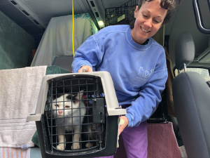 Atlanta-based Furkids Disrupts Traditional Animal Adoption Process  with Unique TransFur Program