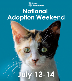 Save a Life this Weekend with Furkids at Petco!