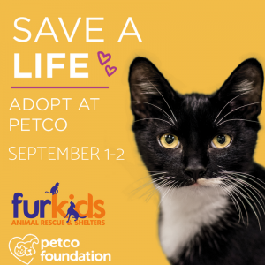 Petco Foundation And Furkids Invite You To  Save A Life This Weekend At Petco