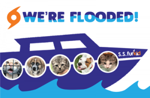We're Flooded! Can You Help?