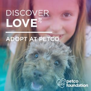 Petco National Adoption Weekend is July 7th and 8th - We're going for a new record!